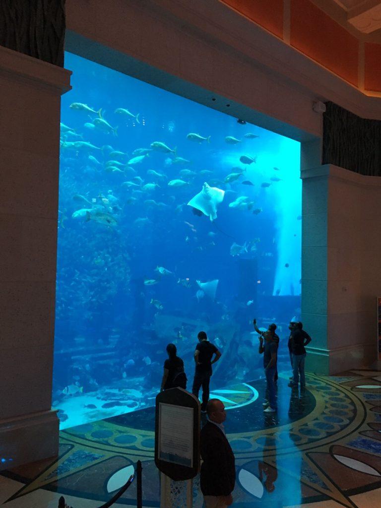 ドバイ 水族館